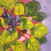 African Violet Still Life Oil Painting Print by Nancy Merkle