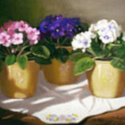 African Violets Print by Linda Jacobus