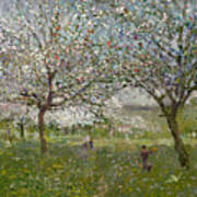 Apple Trees In Flower Print by Ernest Quost