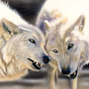 Arctic Pair Print by Sandi Baker