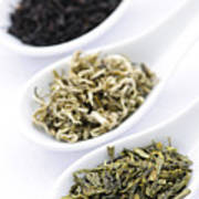 Assortment Of Dry Tea Leaves In Spoons Print by Elena Elisseeva