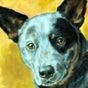 Australian Cattle Dog Blue Heeler On Gold Print by Dottie Dracos