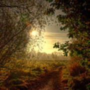 Autumn Mist Print by Kim Shatwell-Irishphotographer