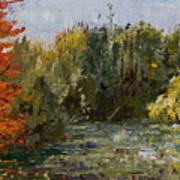 Autumn  Pond Print by Nancy Albrecht