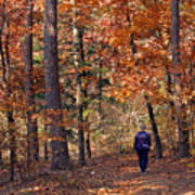 Autumn Stroll Print by Gayle Johnson