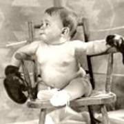 Baby Boxer Print by Daniel Napoli