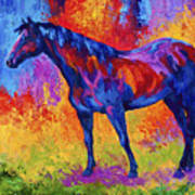Bay Mare II Print by Marion Rose