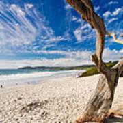 Beach View Carmel By The Sea California Print by George Oze