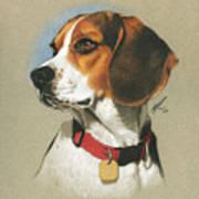 Beagle Print by Marshall Robinson