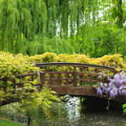 Beautiful Garden Art Print by Boon Mee