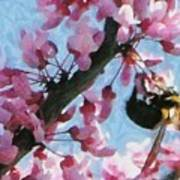 Bee To The Blossom Print by Jeff Kolker