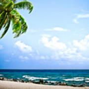Belize Private Island Beach Print by Ryan Kelly