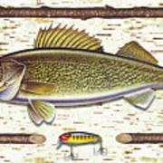 Birch Walleye Print by JQ Licensing