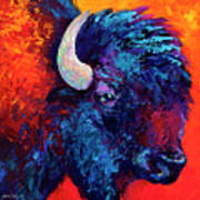 Bison Head Color Study II Print by Marion Rose
