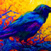 Black Onyx - Raven Print by Marion Rose