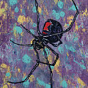 Black Widow Print by Michael Creese