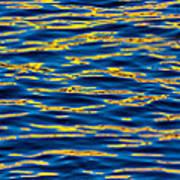 Blue And Gold Print by Steve Gadomski