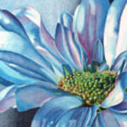 Blue Print by Angela Armano