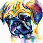 Blue Pug Print by Christy  Freeman