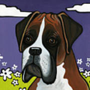 Boxer Print by Leanne Wilkes