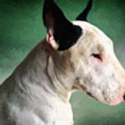 Bull Terrier On Green Print by Michael Tompsett