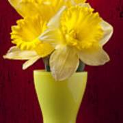 Bunch Of Daffodils Print by Garry Gay