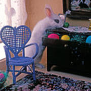 Bunny In Small Room Print by Garry Gay