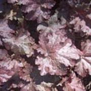 Burgandy Leaves After The Rain Print by Anna Villarreal Garbis