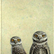 Burrowing Owls Print by James W Johnson
