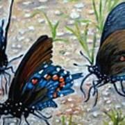 Butterflies Original Oil Painting Print by Natalja Picugina