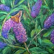 Butterfly View Print by Kendall Kessler