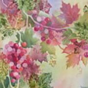 Cabernet Print by Deborah Ronglien