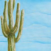 Cactus Jack Print by Joseph Palotas