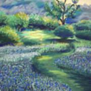 California Spring Print by Karin  Leonard