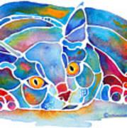 Calypso Cat Print by Jo Lynch