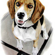 Canine Cutie Print by Ferrel Cordle