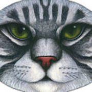 Cat Oval Face Print by Carol Wilson