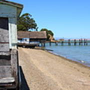 China Camp In Marin Ca Print by Wingsdomain Art and Photography