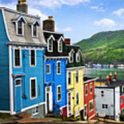 Colorful Houses In St. John's Print by Elena Elisseeva