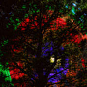 Colorful Tree Print by James BO  Insogna