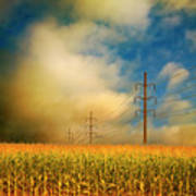 Corn Field At Sunrise Print by Photo by Jim Norris