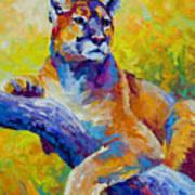 Cougar Portrait I Print by Marion Rose