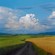 Country Road Print by Pavel  Filatov