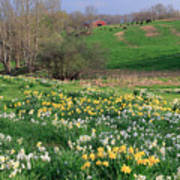 Country Spring Print by Bill Wakeley