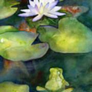 Coy Koi Print by Amy Kirkpatrick