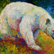 Creamy Vanilla - Kermode Spirit Bear Of Bc Print by Marion Rose