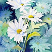 Daisies Print by Sam Sidders