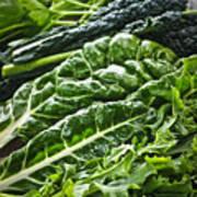 Dark Green Leafy Vegetables Print by Elena Elisseeva