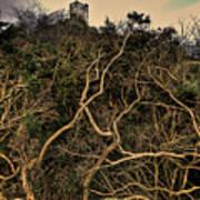 Dolwyddelan Castle Print by Meirion Matthias