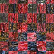 Duke Forest Print by Micah Mullen